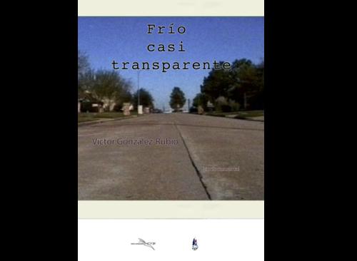 Frío casi transparente (2010)