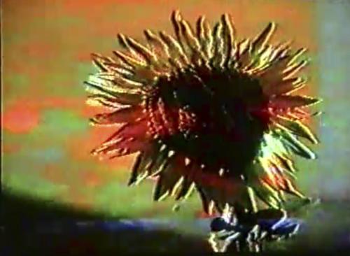 Recuerdos / Come again (1994)
